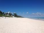 The pink sands beach.