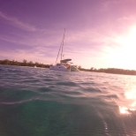 Rose Island 10