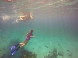 Snorkelling on the beautiful coral reef.