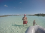 Too shallow for the outboard in the mangroves.