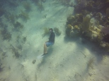 Tony, our expert snorkelling instructor, taking a break at the bottom.