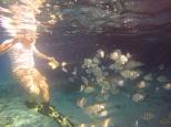 Myron feeding the fishes
