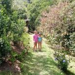 The gorgeous gardens at Wotton Waven.