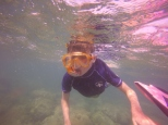 Toby snorkelling.