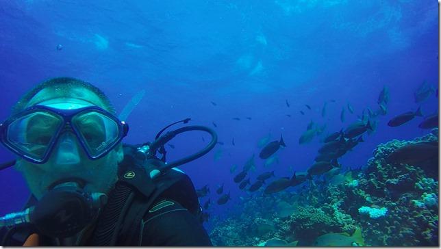 Fakarava Diving